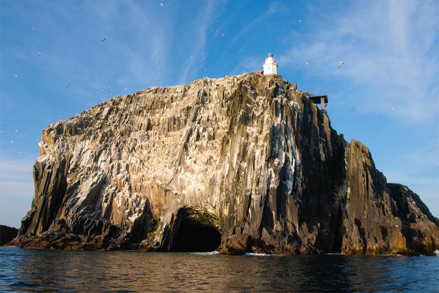 Bull Rock, Skellig Coast Discovery